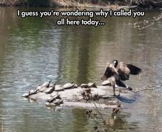 Holding A Secret Meeting