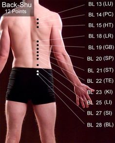 Looking For Tips About Acupuncture? You've Come To The Right Place – akupressur punkte Acupuncture Benefits, Acupuncture Points, Acupressure Points, Cupping Therapy, Massage Therapy, Massage Tips, Massage Techniques, Ayurveda, Acupressure Treatment