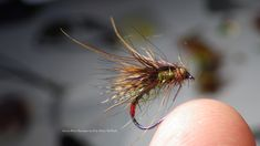 Tying a Green Peter Caddis Emerger by Davie McPhail (HD)