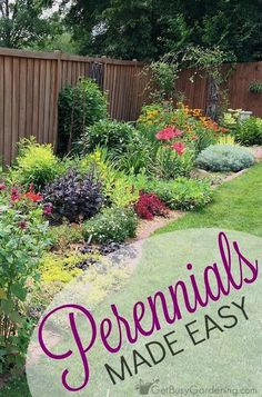 Tips for perennials made easy: How to avoid (or fix) dull, boring gardens and create eye-popping perennial gardens that everyone will envy. garden perennial Perennials Made Easy! How To Create Amazing Gardens - Get Busy Gardening Garden Planning, Flower Garden, Front Yard Landscaping, Garden Flowers Perennials, Amazing Gardens, Perennials, Plants, Urban Garden, Planting Flowers