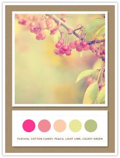 Colour Palette: fuchsia, cotton candy, peach, light lime, celery green