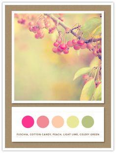 Colour Palette: fuchsia, cotton candy, peach, light lime, celery green