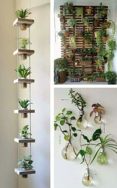 Hanging garden: 38 stunning inspirations to assemble! - Hanging garden: 38 stunning inspirations to assemble! Wedding … Hanging garden: 38 breathtaking inspirations to assemble!