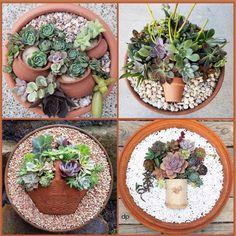 Best 12 Rustic and imaginative succulent pots – SkillOfKing. Succulent Bowls, Succulent Planter Diy, Succulent Bouquet, Succulent Gardening, Succulent Arrangements, Container Gardening, Succulents In Containers, Cacti And Succulents, Planting Succulents