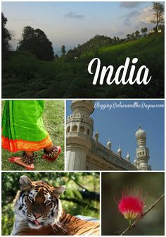 Planning a visit to India? Info about India in our Bayou Travel Bucket series – India BayouTravel