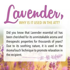 Do you know why Lavender is used in the ATT? Massage technique and lavender eo