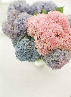 pink, purple, and blue hydrangea centerpiece | Ben Lowry #wedding