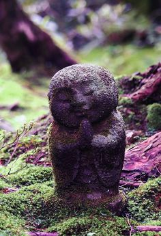 appealing Buddha