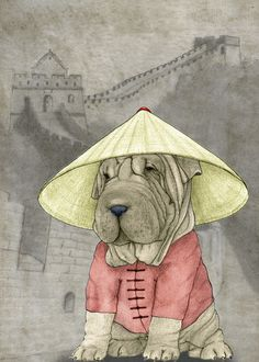 Our artists: Barruf - Shar Pei with Great wall of China - www.customly.com