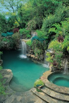 Natural looking pool and spa with waterfalls and loads of plant landscaping