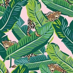 """8"""" Cheetah & Tropical Leaves - Pink by shopcabin Cheetah Print Wallpaper, Pink Wallpaper, Custom Wallpaper, Wallpaper Ideas, Fabric Wallpaper, Jungle Theme, Tropical Leaves, Natural Texture, Surface Design"""