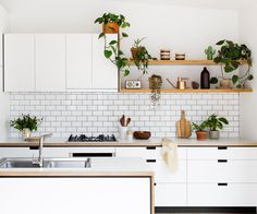 With bespoke, marble-clad kitchens on one end of the scale, and cookie-cutter laminate kitchens on the other; three Melbourne furniture makers spotted the gap for an affordable designer kitchen.