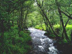 Parque Natural Lago de Sanabria y Alrededores - Turismo de Sanabria