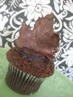 OOOOOOOO!!!!!!! How gorgeous is this? Especially if the leaf was a different color???