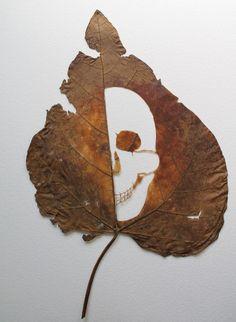 Stunning leaf art by Lorenzo Duran