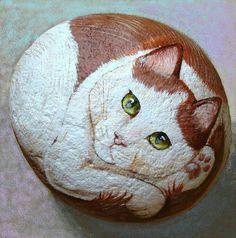 Rock cat art~*