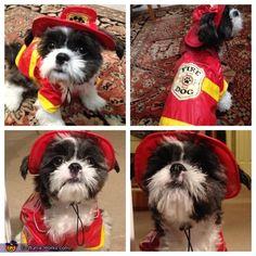 Puppy Fire Rescue - Halloween Costume Contest via @costumeworks