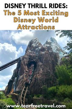 Looking for a more thrilling ride at Disney World? Disney parks might not be known for hair-raising excitement, but Disney also has exciting rides that you'll surely enjoy. Here are the top five true Disney thrill rides. Disney Cruise Tips, Disney Vacation Club, Disney Vacations, Disney Parks, Disney Travel, Disney World Outfits, Disney World Rides, Disney World Attractions, Disney Hotels