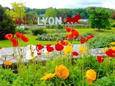 Only Lyon par Nathalie BOUILLAUD sur L'Internaute