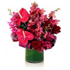 Tropical flowers Gold Coast Tropical Flower Arrangements, Tropical Flowers, Send Flowers, Large Flowers, Gold Coast Australia, Order Flowers Online, Clear Glass Vases, Floral Bouquets, Planting Flowers