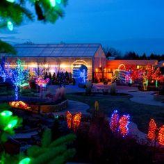 Garden of Lights at Gardens on Spring Creek
