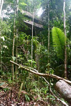 @ Amazon Colombia