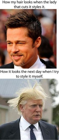 My Hair Looks - funny pictures - funny photos - funny images - funny pics - funny quotes - funny animals @ humor Funny Meme Pictures, Funny Quotes, Funny Memes, Funny Pranks, Memes Humor, Videos Funny, Look Here, Look At You, Brad Pitt