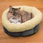 Cat is Good Snuggle Cat Bed - Gray