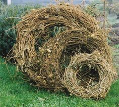 Hop Wreaths