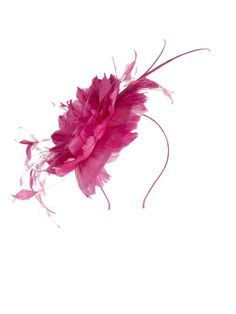 Mother Of The Bride Fascinators | Mother Of The Groom Fascinators | Wedding Fascinators |