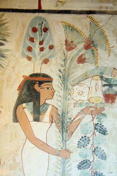 https://flic.kr/p/8UZNxT | Tumba de Nakht  TT52 , Sheikh Abd el-Qurna , Luxor.