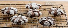 Chocolate cookies rolled in powered sugar and baked until perfectly chewy, what's not to love about that?