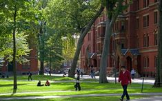 University rankings: Top 10 world universities 2012/13 - in pictures - Telegraph
