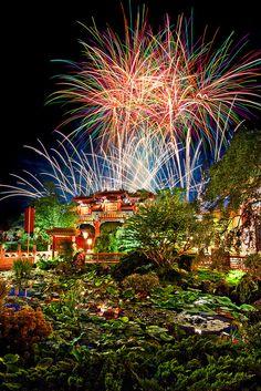 China Illuminations by Katie Marino, via Flickr