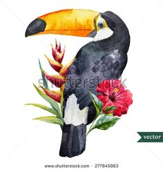vector watercolor toucan with tropical flowers - stock vector