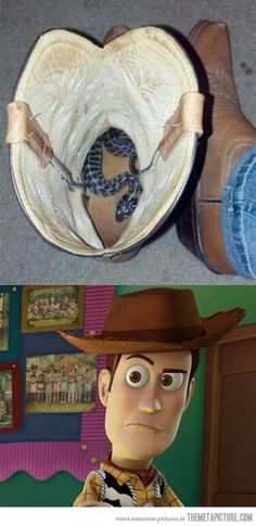 Haha woody wasn't joking...