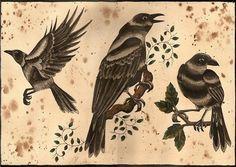 The Birds  crow tattoo flash :O by ~Scarlet-Hel