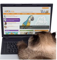 ASPCA Website and Resources for Kids: Free Games, Printables, Videos and more!