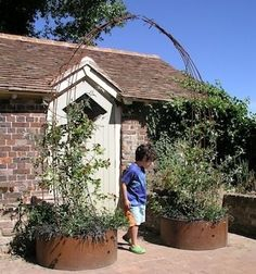 Contemporary Garden Arch.  Try with stump planters!!!