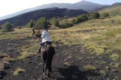 Etna and the lava caves (full day). horse riding Sicily. www.stable-mates.com