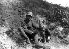 World War I in Photos: Animals at War - The Atlantic