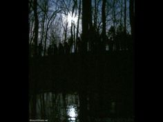 http://www.angelsghosts.com/shadow-people-on-a-hill  Photographed by the late Tom Halstead of Missouri Ghosts.  A group of human forms stand beside each other, watching the investigators at night under the moon.   Authentic and remarkable photo - story and notes can be found on its page.  (Permission was granted by Terry and Greg of http://MissouriGhosts.net and http://ParanormalTaskForce.com.)