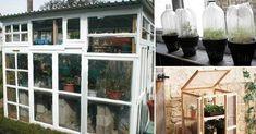 Originales ideas de invernaderos para tu jardín | Bioguia Small Places, My Dream, Windows, Patio, Awesome, Diy, House, Gardening, Outdoors