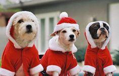 The Santas.