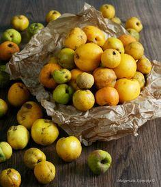 Hummus, Pear, Apple, Fruit, Diet, Thermomix, Apple Fruit, Apples, Bulb
