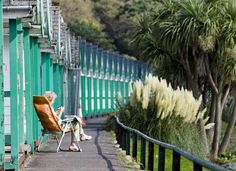 Langland, such lovely huts