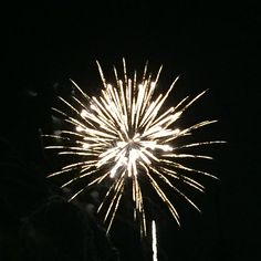 july 4th 2015 events in florida