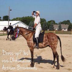 Best horse costume ever! Giraffe!  www.okokonia.com Check out our artisan browbands!