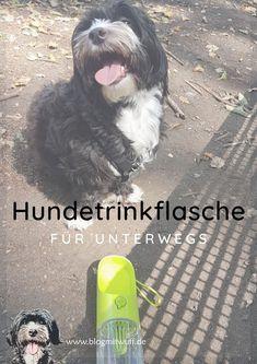 LABRADOR  Hund dog Halskette necklace LB1 sehr schöne beautiful mit Box