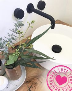 Spin Nero Tapware, matte black dome waste and Eden Round Basin used in the @warnerfamily bathroom – loving the finishing touch of Australian natives used as well #matteblack #bathroomideas